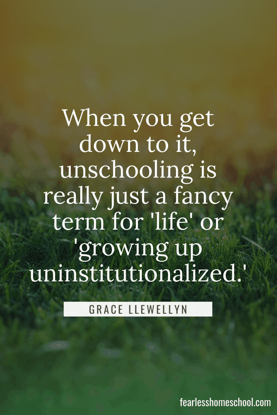 When you get down to it, unschooling is really just a fancy term for 'life' or 'growing up uninstitutionalized. grace llewellyn homeschooling quote
