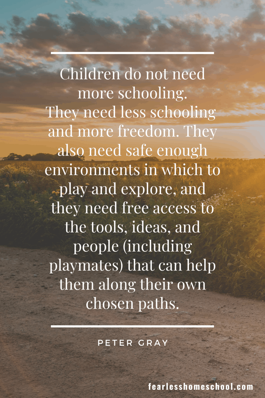 Children do not need more schooling. They need less schooling and more freedom. They also need safe enough environments in which to play and explore, and they need free access to the tools, ideas, and people (including playmates) that can help them along their own chosen paths. peter gray