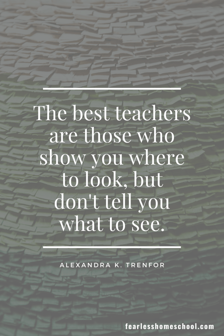 The best teachers are those who show you where to look, but don't tell you what to see. Alexandra K. Trenfor homeschooling quote